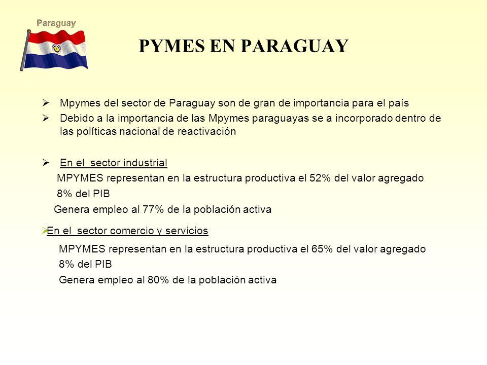 PYMES EN PARAGUAY Mpymes del sector de Paraguay son de gran de importancia para el país Debido a la importancia de las Mpymes paraguayas se a incorporado dentro de las políticas nacional de reactivación En el sector industrial MPYMES representan en la estructura productiva el 52% del valor agregado 8% del PIB Genera empleo al 77% de la población activa En el sector comercio y servicios MPYMES representan en la estructura productiva el 65% del valor agregado 8% del PIB Genera empleo al 80% de la población activa