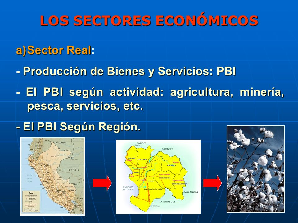 LOS SECTORES ECONÓMICOS a)Sector Real a)Sector Real: - Producción de Bienes y Servicios: PBI - El PBI según actividad: agricultura, minería, pesca, servicios, etc.