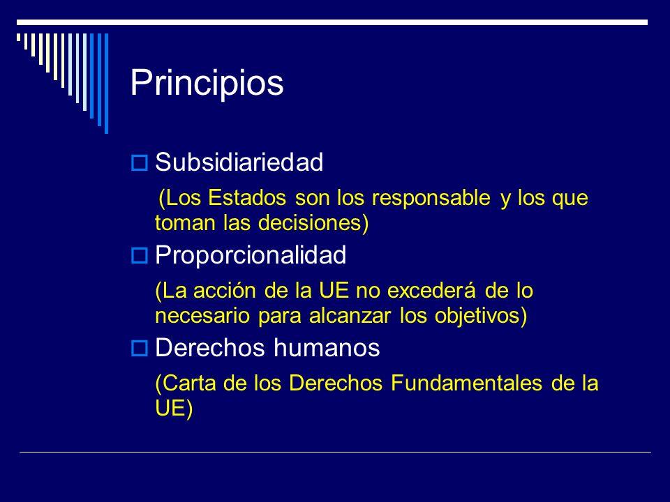 Principios Subsidiariedad (Los Estados son los responsable y los que toman las decisiones) Proporcionalidad (La acción de la UE no excederá de lo necesario para alcanzar los objetivos) Derechos humanos (Carta de los Derechos Fundamentales de la UE)