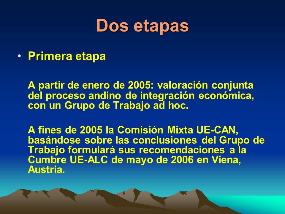 Dos etapas Primera etapa A partir de enero de 2005: valoración conjunta del proceso andino de integración económica, con un Grupo de Trabajo ad hoc.