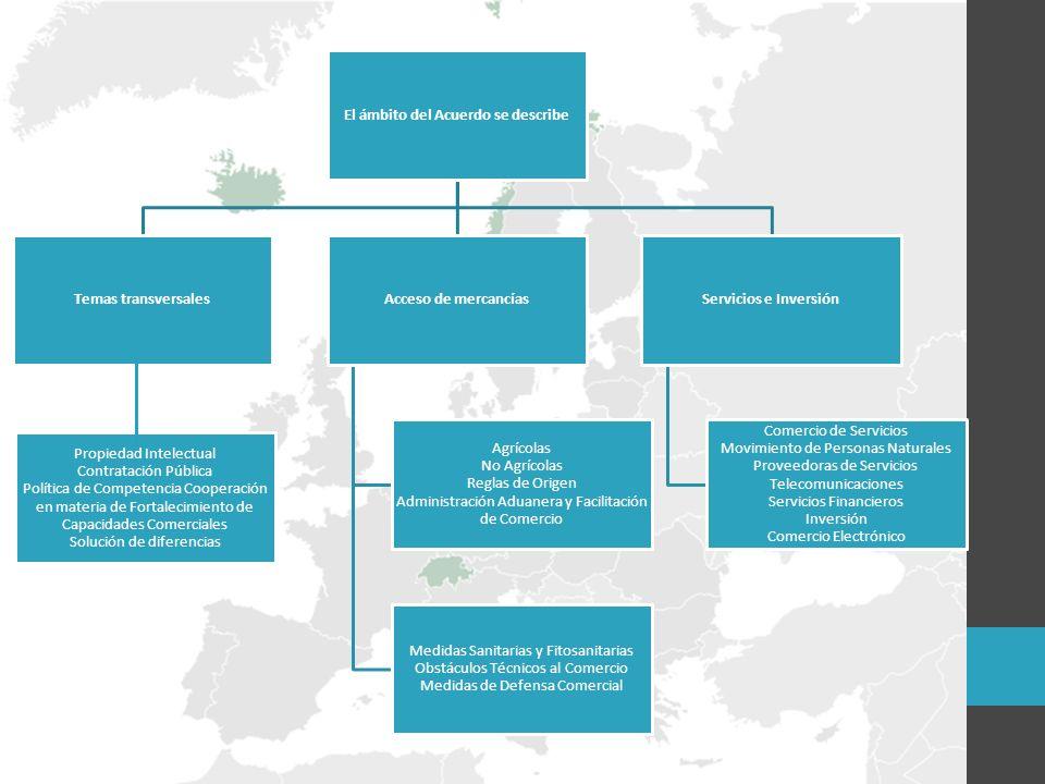 El ámbito del Acuerdo se describe Temas transversalesAcceso de mercancías Agrícolas No Agrícolas Reglas de Origen Administración Aduanera y Facilitación de Comercio Medidas Sanitarias y Fitosanitarias Obstáculos Técnicos al Comercio Medidas de Defensa Comercial Servicios e Inversión Comercio de Servicios Movimiento de Personas Naturales Proveedoras de Servicios Telecomunicaciones Servicios Financieros Inversión Comercio Electrónico Propiedad Intelectual Contratación Pública Política de Competencia Cooperación en materia de Fortalecimiento de Capacidades Comerciales Solución de diferencias