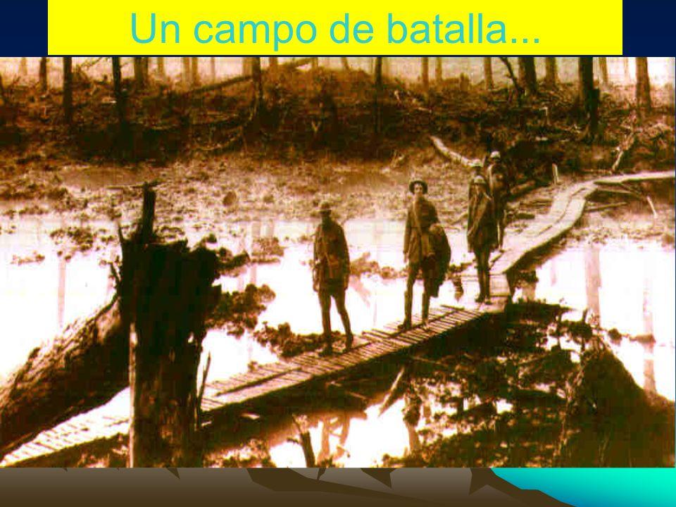 Un campo de batalla...