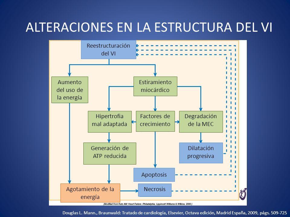 ALTERACIONES EN LA ESTRUCTURA DEL VI Reestructuración del VI Necrosis Apoptosis Dilatación progresiva Aumento del uso de la energía Factores de crecim