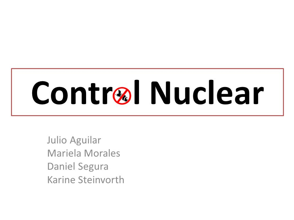 Control Nuclear Julio Aguilar Mariela Morales Daniel Segura Karine Steinvorth