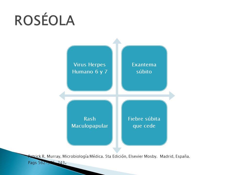 Virus Herpes Humanos 6 y 7 DNA virus Roseolovirus subfamilia Betaherpesvirinae Periodo de incubación 5-15 días Patrick R.