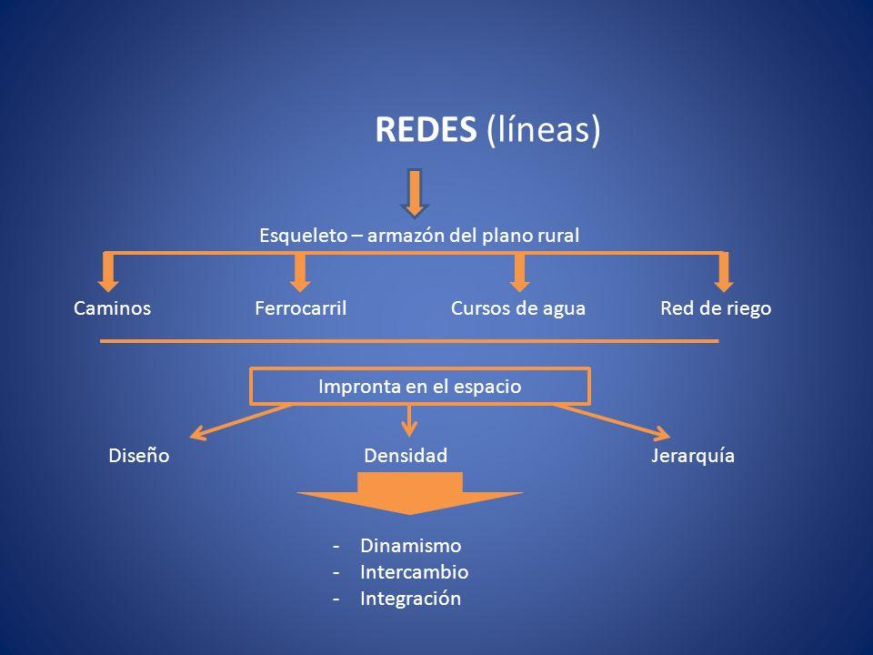 REDES (líneas) Esqueleto – armazón del plano rural Caminos Ferrocarril Cursos de agua Red de riego Impronta en el espacio Diseño Densidad Jerarquía -D