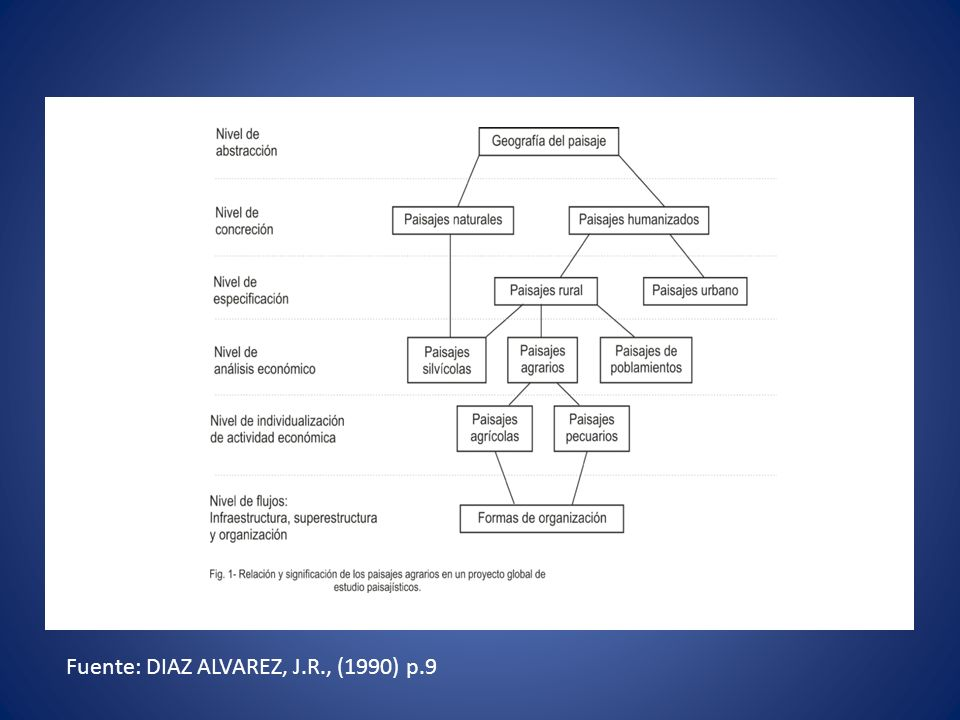Fuente: DIAZ ALVAREZ, J.R., (1990) p.9