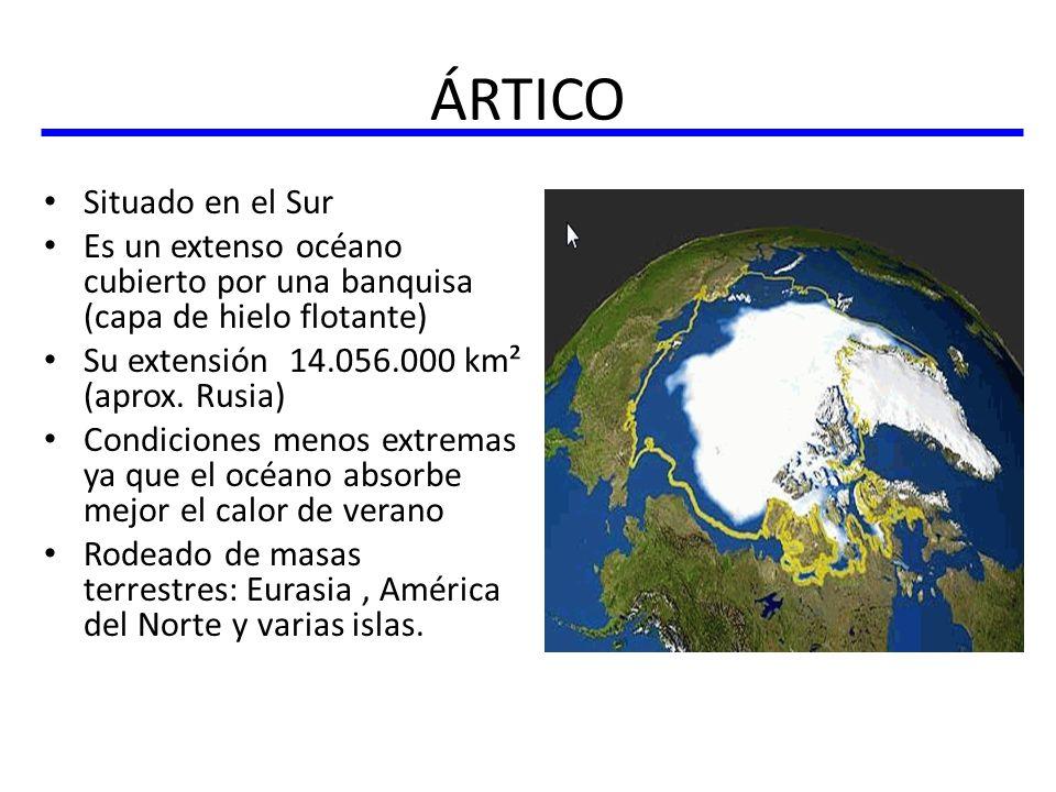 ÁRTICO Situado en el Sur Es un extenso océano cubierto por una banquisa (capa de hielo flotante) Su extensión 14.056.000 km² (aprox. Rusia) Condicione