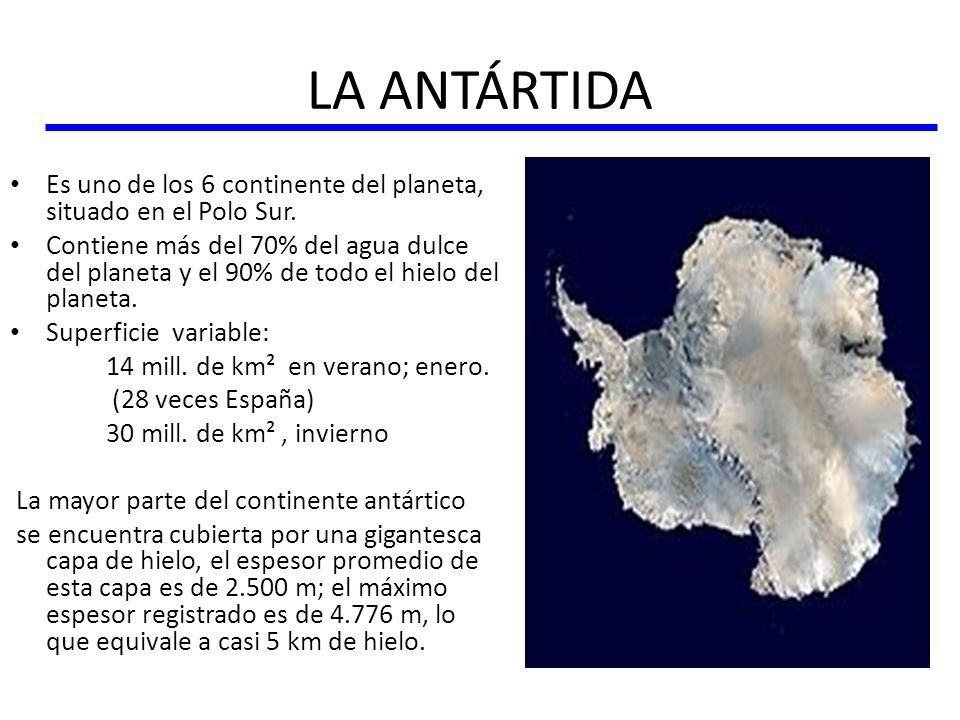 LA ANTÁRTIDA Es uno de los 6 continente del planeta, situado en el Polo Sur. Contiene más del 70% del agua dulce del planeta y el 90% de todo el hielo