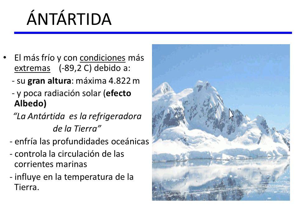 ÁNTÁRTIDA El más frío y con condiciones más extremas (-89,2 C) debido a: - su gran altura: máxima 4.822 m - y poca radiación solar (efecto Albedo) La