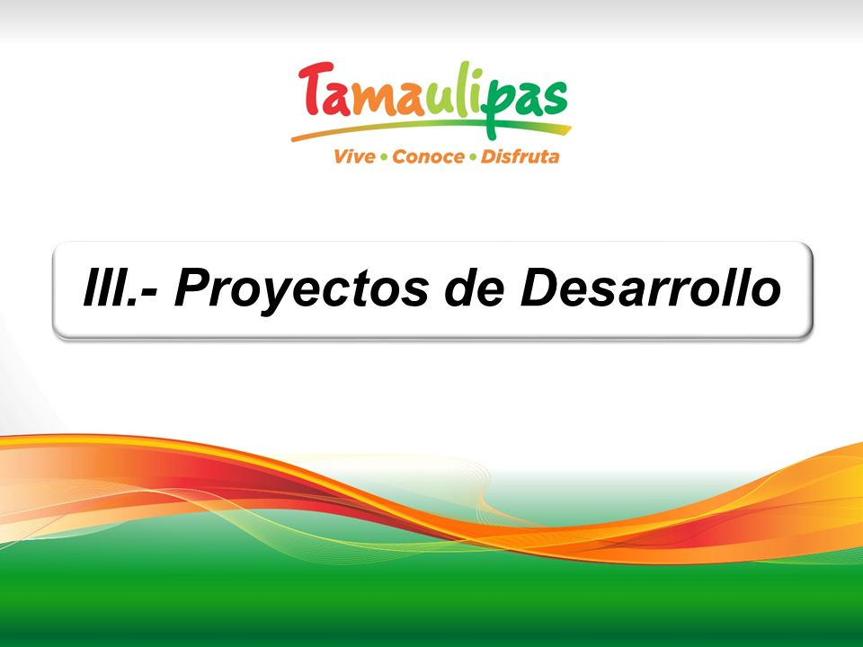 III.- Proyectos de Desarrollo