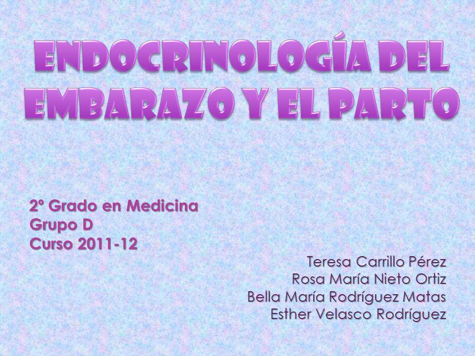 2º Grado en Medicina Grupo D Curso 2011-12 Teresa Carrillo Pérez Rosa María Nieto Ortiz Bella María Rodríguez Matas Esther Velasco Rodríguez
