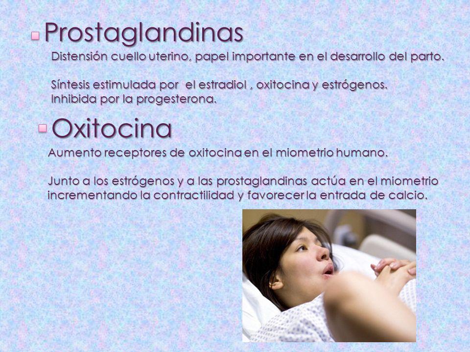 Prostaglandinas Oxitocina Distensión cuello uterino, papel importante en el desarrollo del parto. Síntesis estimulada por el estradiol, oxitocina y es