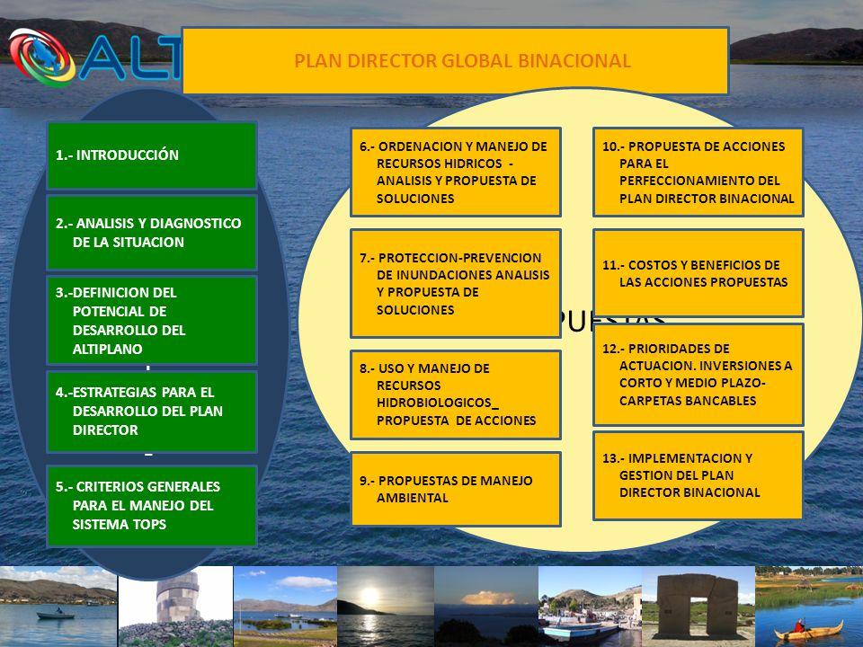 PLAN DIRECTOR GLOBAL BINACIONAL 4.-ESTRATEGIAS PARA EL DESARROLLO DEL PLAN DIRECTOR PROPUESTAS 13.- IMPLEMENTACION Y GESTION DEL PLAN DIRECTOR BINACIO