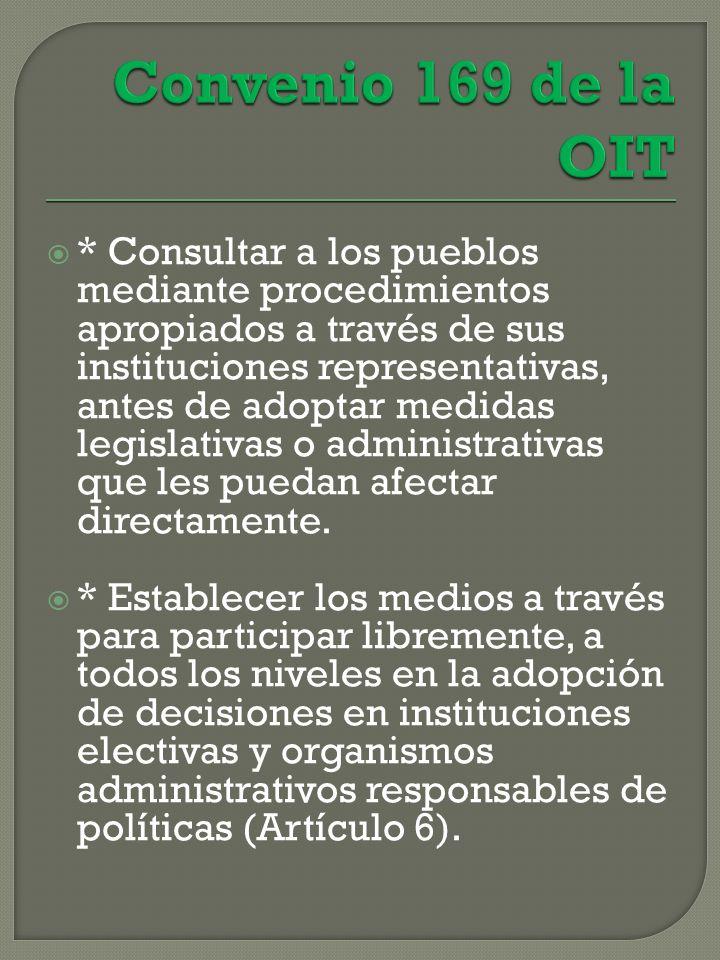 * Consultar a los pueblos mediante procedimientos apropiados a través de sus instituciones representativas, antes de adoptar medidas legislativas o administrativas que les puedan afectar directamente.