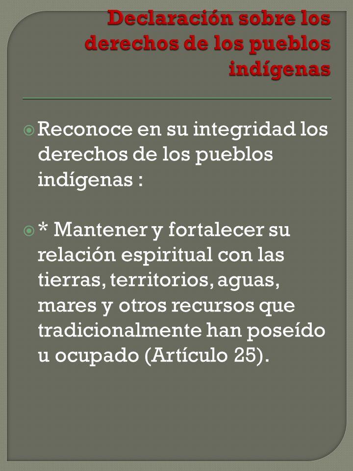 Reconoce en su integridad los derechos de los pueblos indígenas : * Mantener y fortalecer su relación espiritual con las tierras, territorios, aguas, mares y otros recursos que tradicionalmente han poseído u ocupado (Artículo 25).