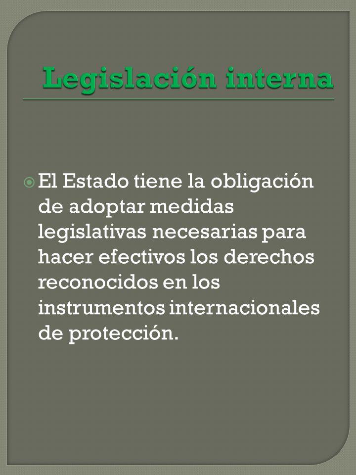 El Estado tiene la obligación de adoptar medidas legislativas necesarias para hacer efectivos los derechos reconocidos en los instrumentos internacionales de protección.
