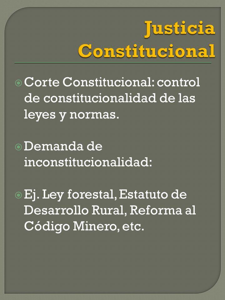 Corte Constitucional: control de constitucionalidad de las leyes y normas.