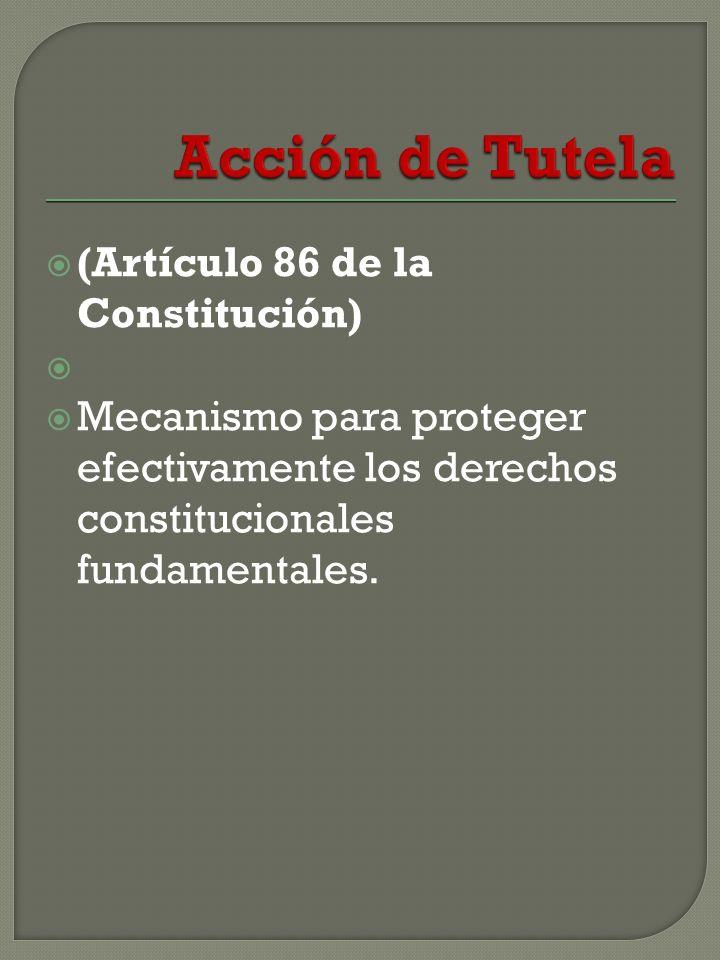 (Artículo 86 de la Constitución) Mecanismo para proteger efectivamente los derechos constitucionales fundamentales.