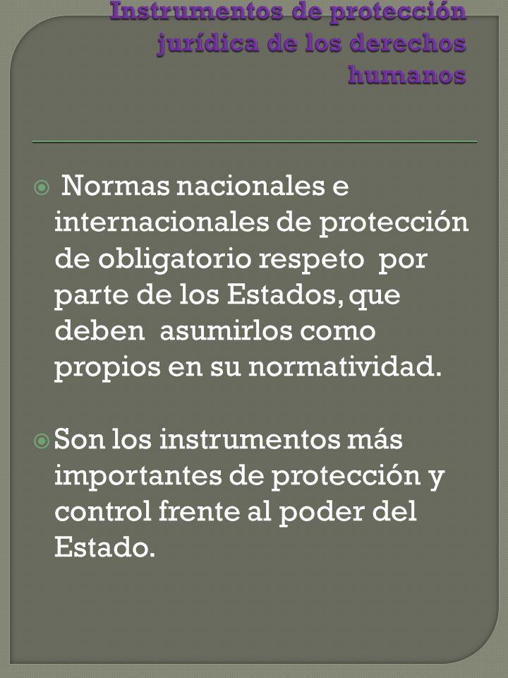 Normas nacionales e internacionales de protección de obligatorio respeto por parte de los Estados, que deben asumirlos como propios en su normatividad.