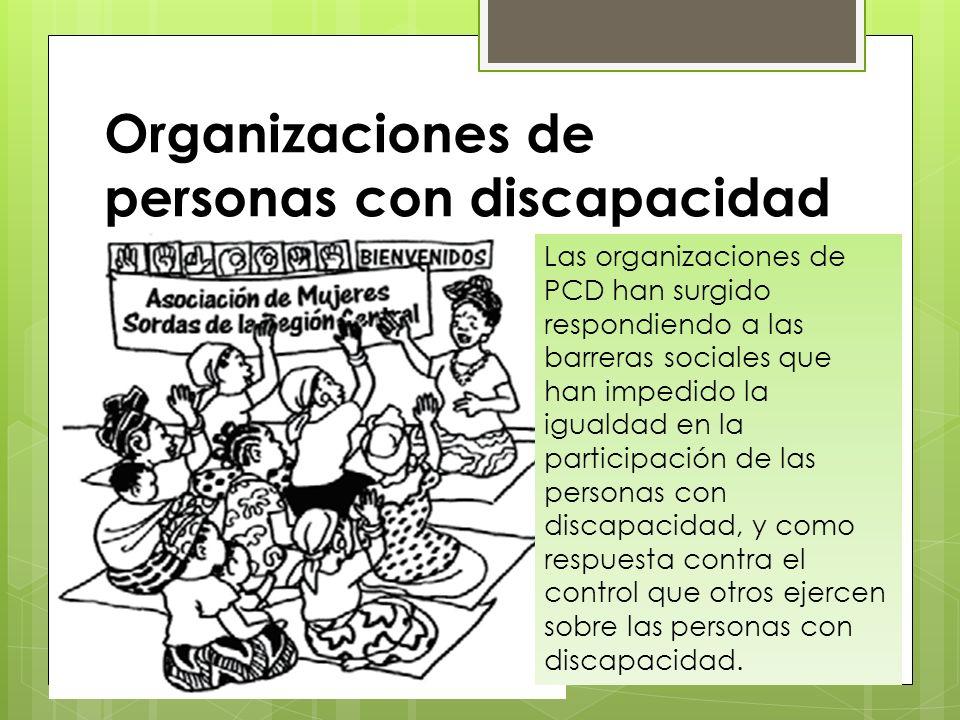 Características Son organizaciones de defensa de los derechos que trabajan en los niveles regionales, nacionales e internacionales, para cambiar políticas y asegurar la igualdad de derechos y la igualdad de oportunidades para las personas con discapacidad.