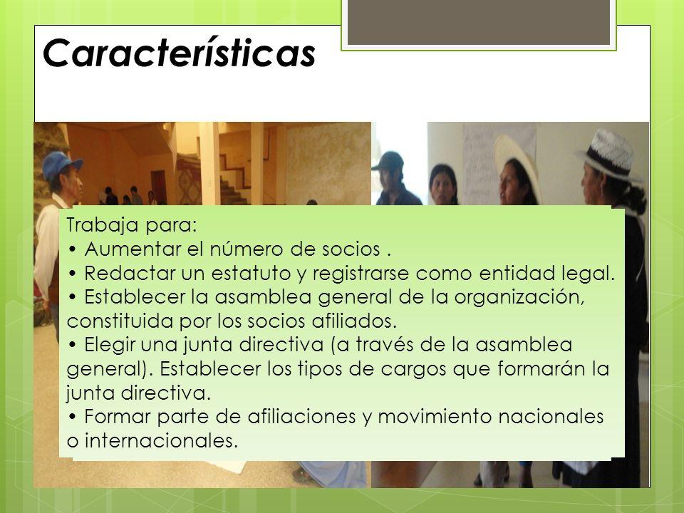 Características Son organizaciones de defensa de los derechos que trabajan en los niveles regionales, nacionales e internacionales, para cambiar polít