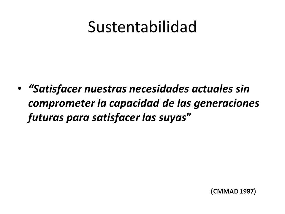Sustentabilidad Satisfacer nuestras necesidades actuales sin comprometer la capacidad de las generaciones futuras para satisfacer las suyas (CMMAD 198