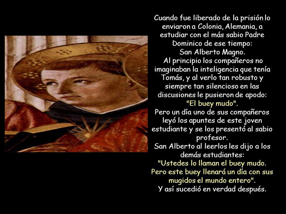 Cuando fue liberado de la prisión lo enviaron a Colonia, Alemania, a estudiar con el más sabio Padre Dominico de ese tiempo: San Alberto Magno.
