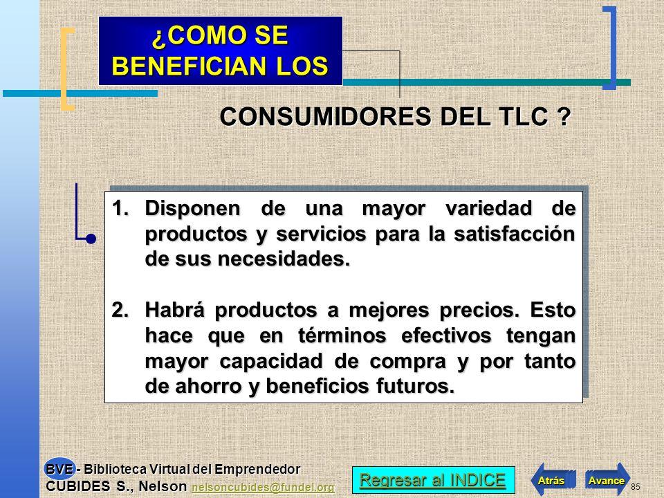84 En principio, todos los sectores de la economía están incluidos en las negociaciones del TLC.