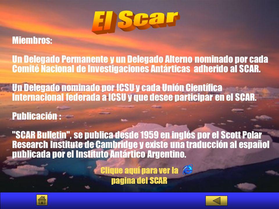 Miembros: Un Delegado Permanente y un Delegado Alterno nominado por cada Comité Nacional de Investigaciones Antárticas adherido al SCAR. Un Delegado n
