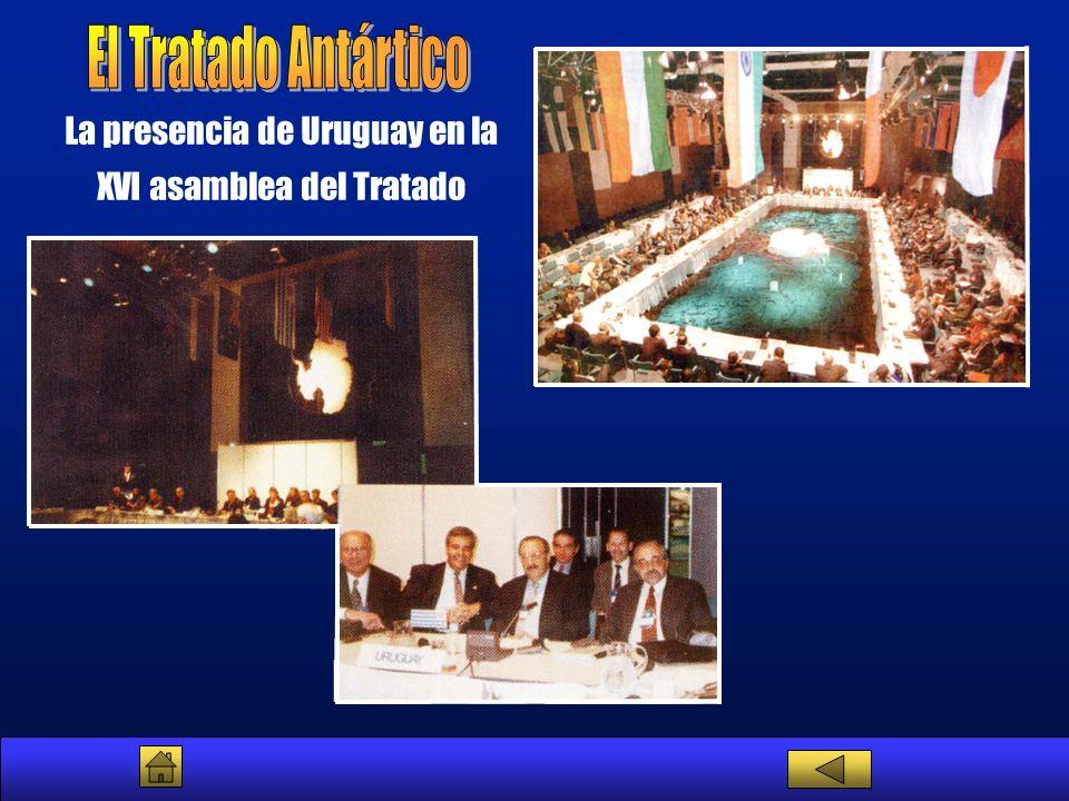 La presencia de Uruguay en la XVI asamblea del Tratado