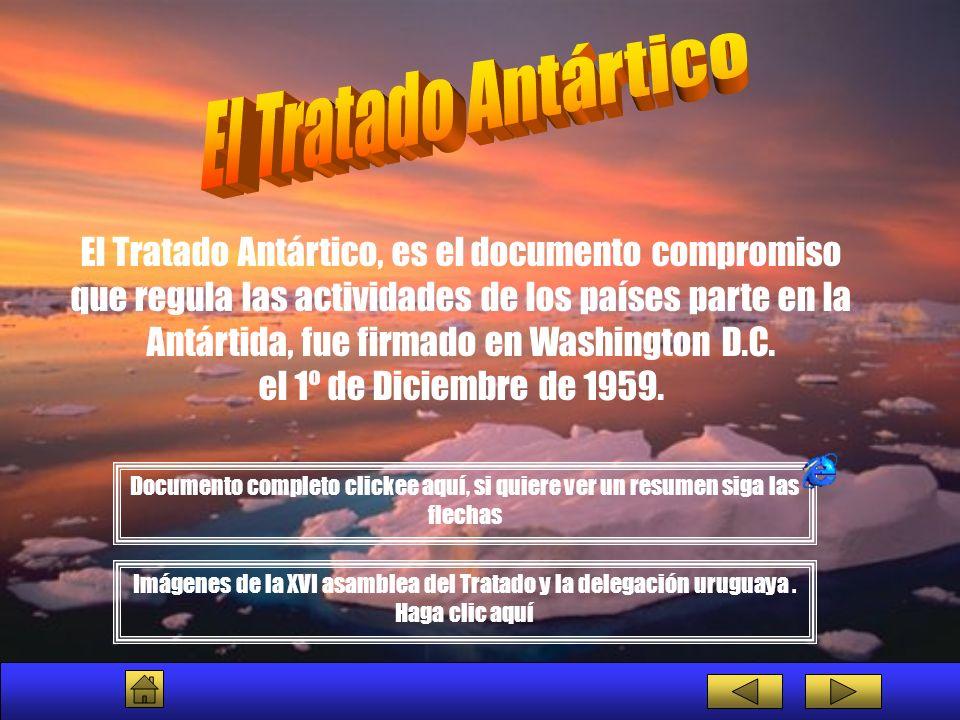 El Tratado Antártico, es el documento compromiso que regula las actividades de los países parte en la Antártida, fue firmado en Washington D.C. el 1º