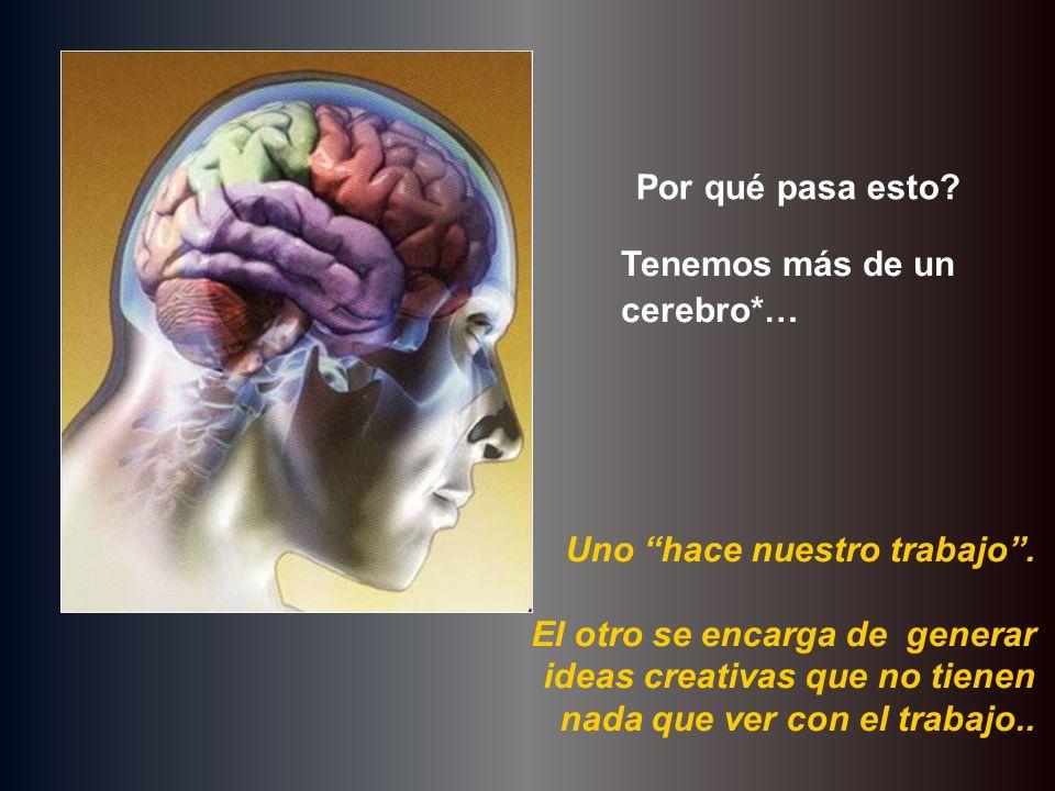 Por qué pasa esto? Tenemos más de un cerebro*… Uno hace nuestro trabajo. El otro se encarga de generar ideas creativas que no tienen nada que ver con