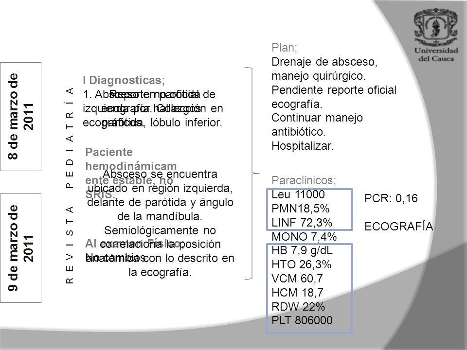Plan; Drenaje de absceso, manejo quirúrgico.Pendiente reporte oficial ecografía.