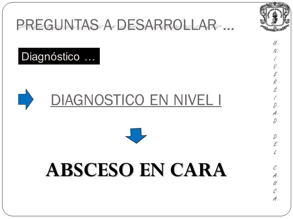 PREGUNTAS A DESARROLLAR … UNIUNIVERSVERSIDADIDAD DEL DEL CAUCA CAUCAUNIUNIVERSVERSIDADIDAD DEL DEL CAUCA CAUCA DIAGNOSTICO EN NIVEL I ABSCESO EN CARA Diagnóstico …