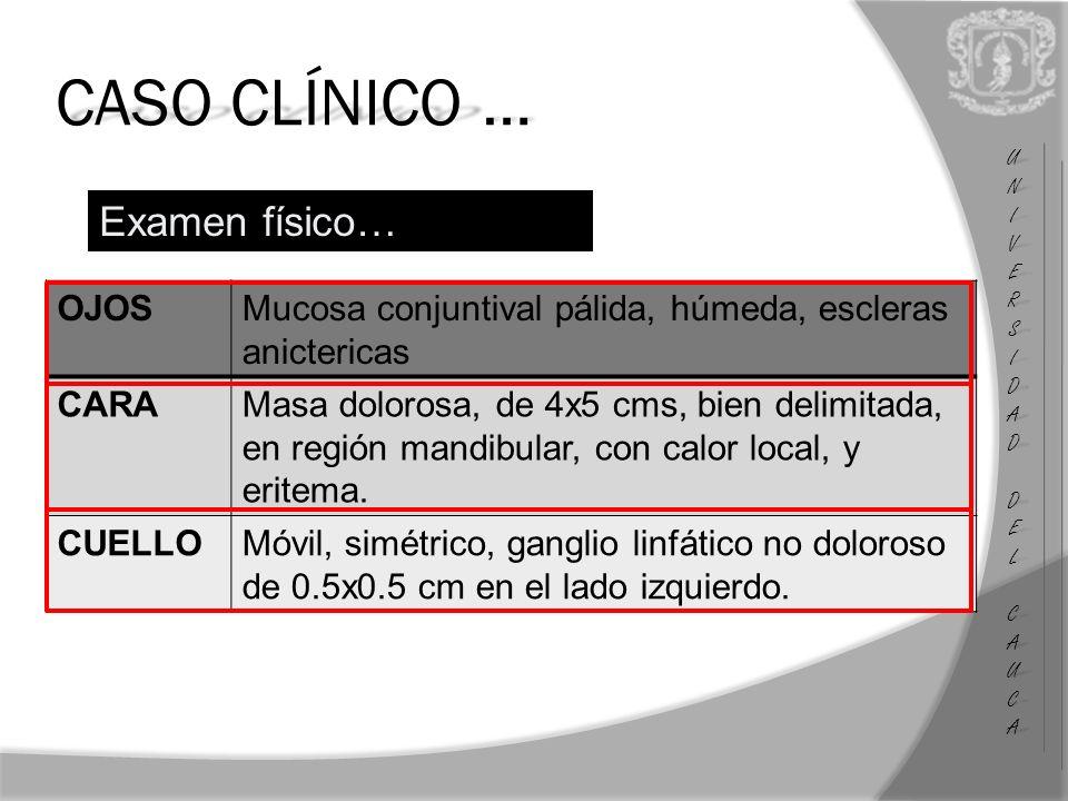 UNIUNIVERSVERSIDADIDAD DEL DEL CAUCA CAUCAUNIUNIVERSVERSIDADIDAD DEL DEL CAUCA CAUCA CASO CLÍNICO … Examen físico… OJOSMucosa conjuntival pálida, húmeda, escleras anictericas CARAMasa dolorosa, de 4x5 cms, bien delimitada, en región mandibular, con calor local, y eritema.