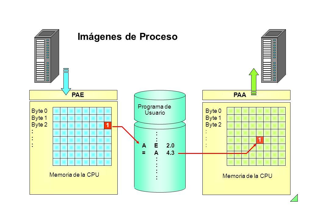 Imágenes de Proceso Programa de Usuario : : A E2.0 = A4.3 : Byte 0 Byte 1 Byte 2 : Memoria de la CPU PAA 1 Byte 0 Byte 1 Byte 2 : PAE Memoria de la CP