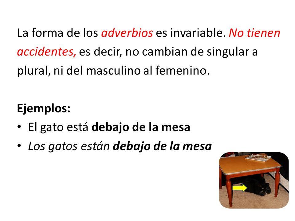 La forma de los adverbios es invariable. No tienen accidentes, es decir, no cambian de singular a plural, ni del masculino al femenino. Ejemplos: El g