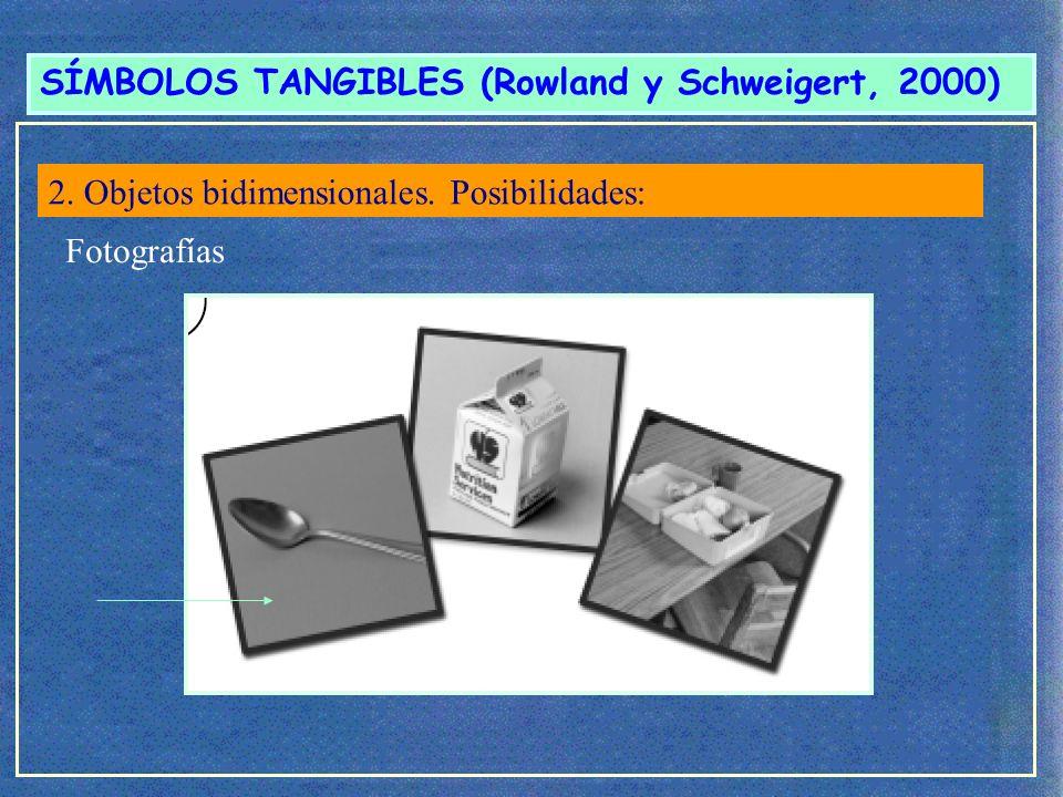 SÍMBOLOS TANGIBLES (Rowland y Schweigert, 2000) Dibujo específico 2.