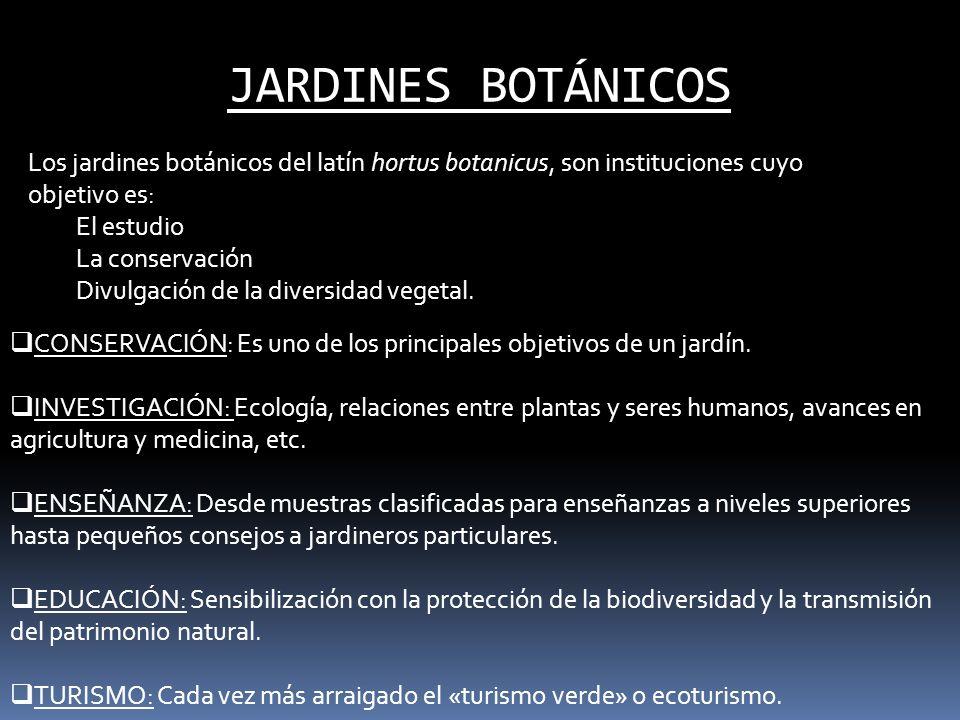 JARDINES BOTÁNICOS Los jardines botánicos del latín hortus botanicus, son instituciones cuyo objetivo es: El estudio La conservación Divulgación de la