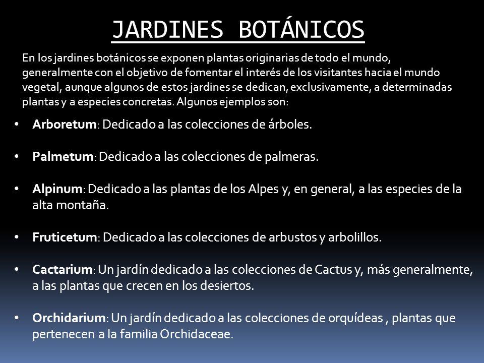JARDINES BOTÁNICOS Arboretum: Dedicado a las colecciones de árboles. Palmetum: Dedicado a las colecciones de palmeras. Alpinum: Dedicado a las plantas