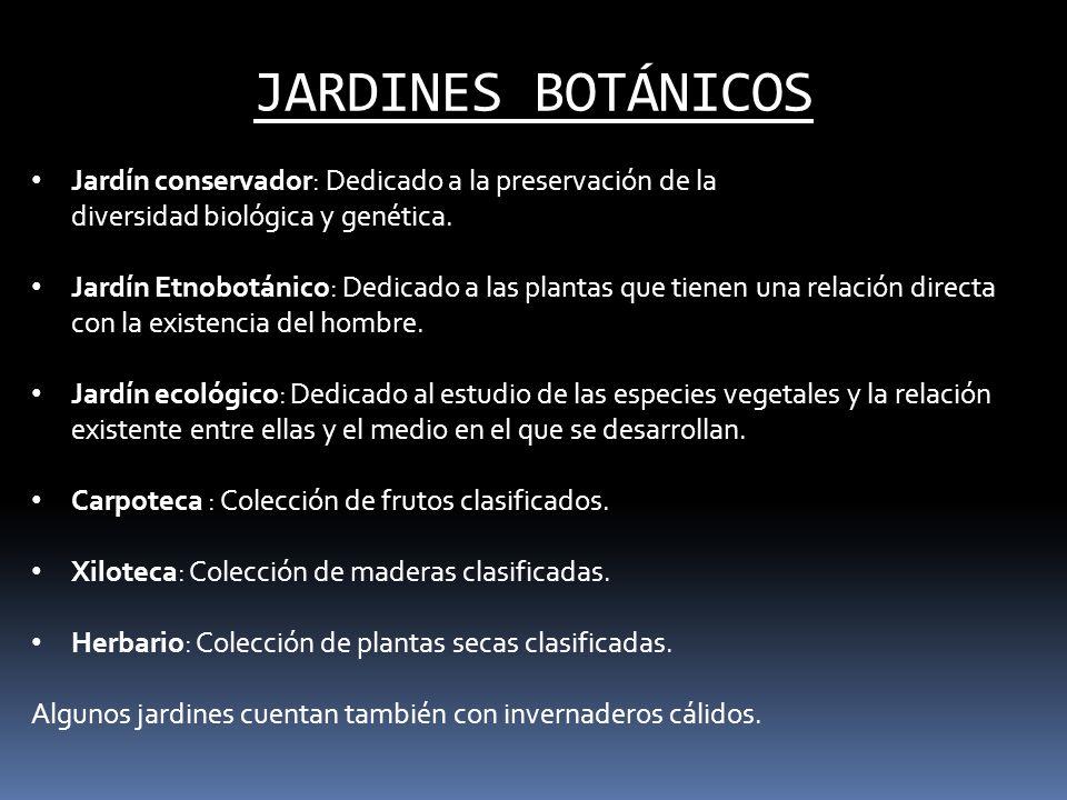JARDINES BOTÁNICOS Jardín conservador: Dedicado a la preservación de la diversidad biológica y genética. Jardín Etnobotánico: Dedicado a las plantas q