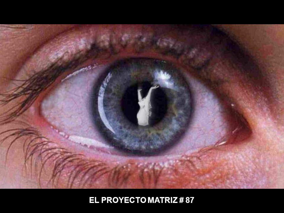 EL PROYECTO MATRIZ # 87