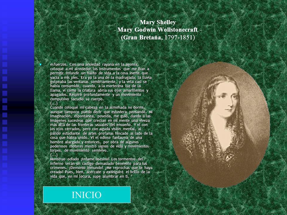 Mary Shelley - Mary Godwin Wollstonecraft - (Gran Bretaña, 1797-1851) esfuerzos. Con una ansiedad rayana en la agonía, coloqué a mi alrededor los inst