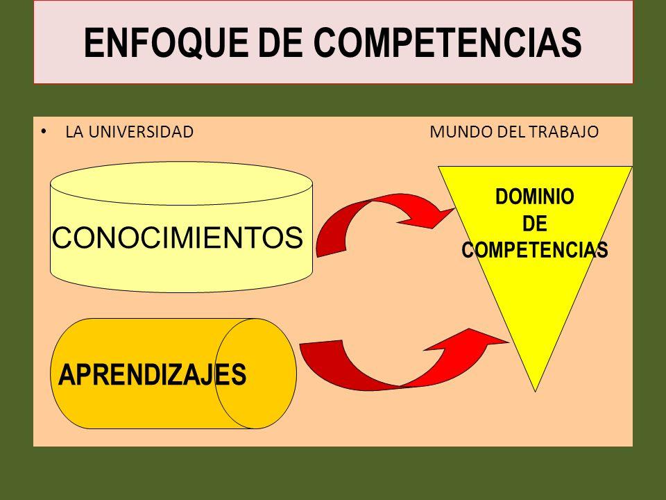 LA UNIVERSIDAD MUNDO DEL TRABAJO CONOCIMIENTOS APRENDIZAJES DOMINIO DE COMPETENCIAS ENFOQUE DE COMPETENCIAS