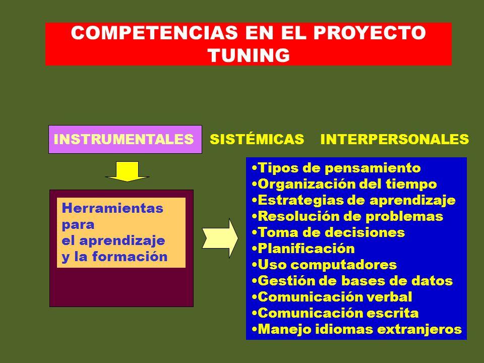 21 INSTRUMENTALES SISTÉMICAS INTERPERSONALES Herramientas para el aprendizaje y la formación Tipos de pensamiento Organización del tiempo Estrategias