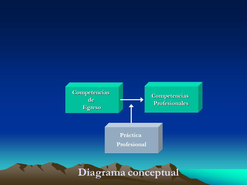 CompetenciasdeEgreso CompetenciasProfesionales Práctica Profesional Diagrama conceptual