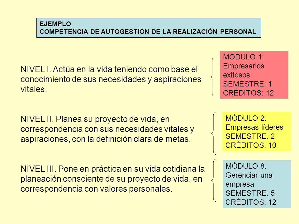 EJEMPLO COMPETENCIA DE AUTOGESTIÓN DE LA REALIZACIÓN PERSONAL NIVEL I.