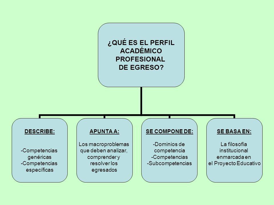 ¿QUÉ ES EL PERFIL ACADÉMICO PROFESIONAL DE EGRESO.