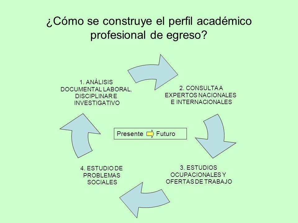 Presente Futuro ¿Cómo se construye el perfil académico profesional de egreso?